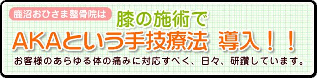 鹿沼おひさま整骨院は、膝の施術でAKAという手技療法導入!!